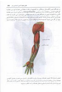 Ghamz 3